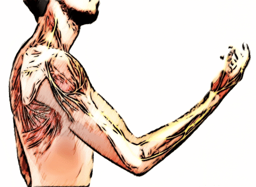 nerve pain in arm